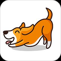 博卡智慧瑜伽appv1.0 安卓版
