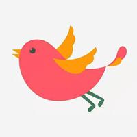 飞鸟看点appv1.0 最新版