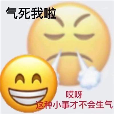 emoji双面表情包超级有趣 很有趣的热门的emoji双面表情合集