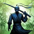 忍者战士阴影v3.0 最新版