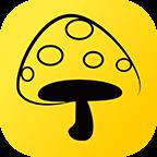 蘑菇钉自动打卡脚本下载-蘑菇钉自动打卡v1.0 最新版