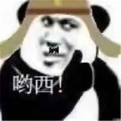 2021熊猫头之太君的疑惑表情包大全-云奇网