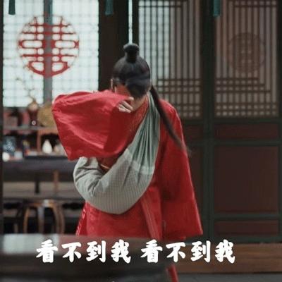 2021电视剧赘婿郭麒麟表情包大全