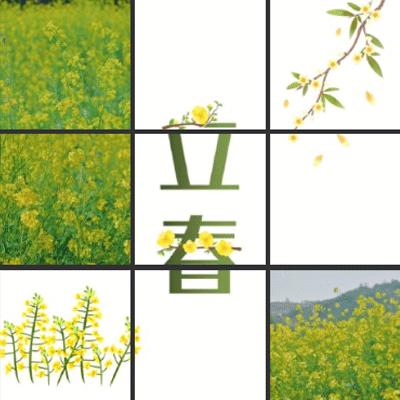 2021立春朋友圈九宫格唯美图片 春天如期而至一起静待花开