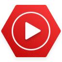 Video speed adjuster(视频加速播放插件)