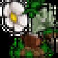 植物大战僵尸修改版