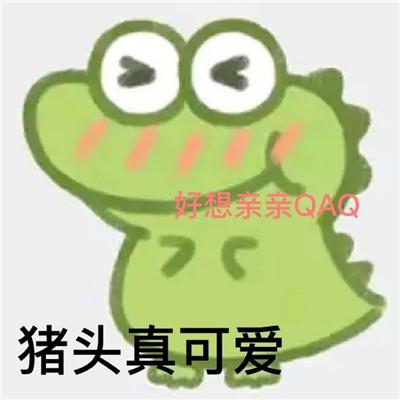 2021全网超火超小鳄鱼表情包全套 聊天必备的小鳄鱼表情大全