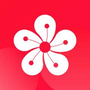 梅语文appv1.0.0 最新版