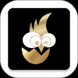 大公鸡商城appv1.6.1 最新版