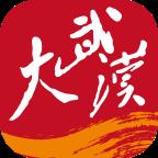 大武汉appv4.0.0 最新版