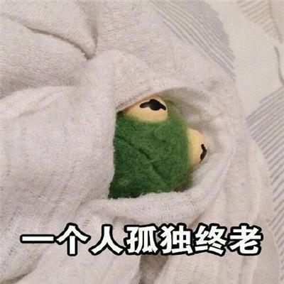 干什么都是一个人的孤单青蛙表情包 我这辈子可能要一个人孤独终老