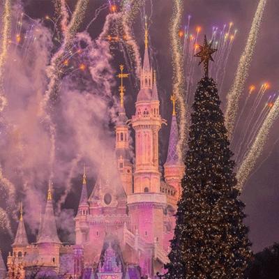 迪士尼城堡微信背景图烟花 往后的日子都充满希望