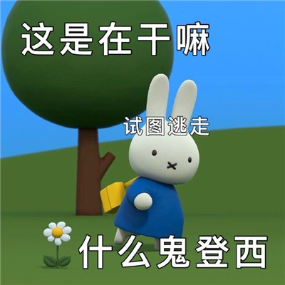 最新版的很萌很可爱米菲兔表情包大全-云奇网