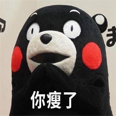 2021最新版熊本熊微信表情包 超可爱的有趣的微信表情大全