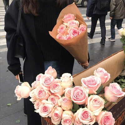 2021唯美又很浪漫的高级感鲜花背景图 抱一下吧因为风很大