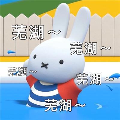 最新版的很萌很可爱米菲兔表情包 阴阳怪气的米菲兔文字表情大全