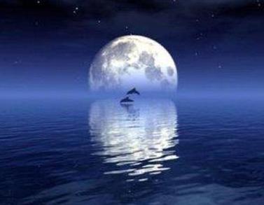 关于描写月亮的温柔浪漫文案大全-云奇网