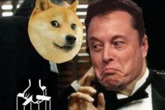 马斯克喊话哪些币 马斯克怎么看待狗狗币、shib的