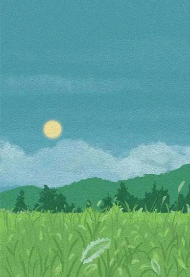 很唯美也很好看的舒心风景壁纸 你并不怕等待你只怕等到一场空