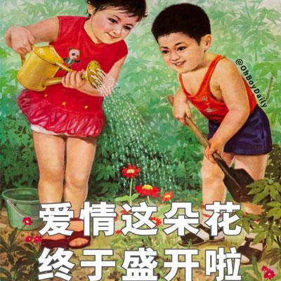 当代青年宣布恋爱文案配图 爱情这朵花重于盛开了