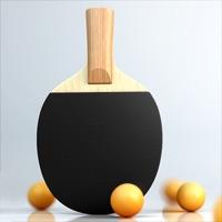 虚拟乒乓球游戏下载iOSv5.6.4 官方版