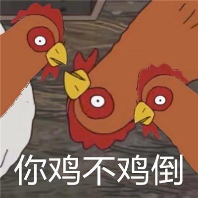 很火热门的你鸡道吗表情包 你鸡不鸡道表情包