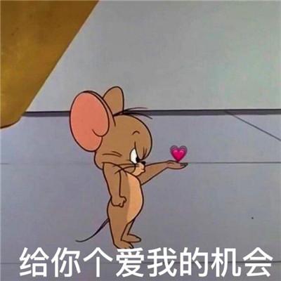 2021老鼠jerry表情包带字搞笑 给你个爱我的机会