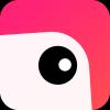 p图拼图相机v1.0.5 安卓版