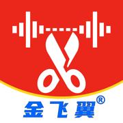 金飞翼音频编辑大师v6.0.5 官方版