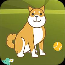 狗语人狗动物翻译器v1.0 安卓版