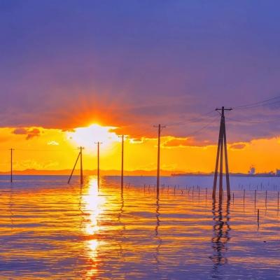 2021适合秋季的橘色夕阳个性头像大全-云奇网