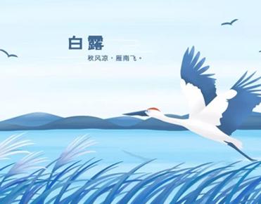 2021二十四节气白露经典祝福语大全-云奇网