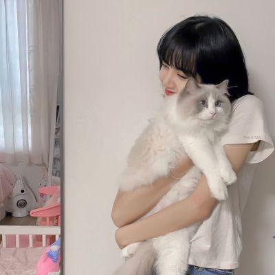 女生抱动物头像可爱萌2021最新大全-云奇网