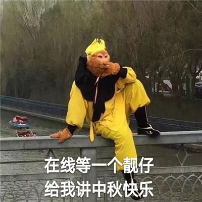 中秋节快乐的可爱又很沙雕的表情大全-云奇网