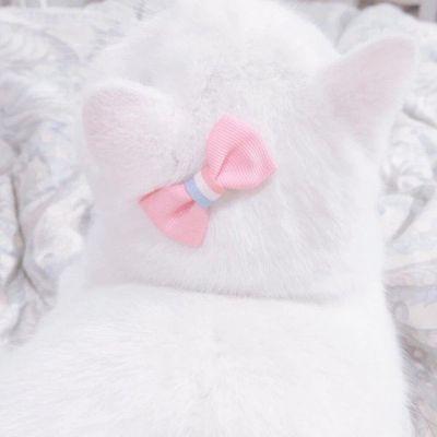 2021最新版很个性超级萌的猫头像大全-云奇网