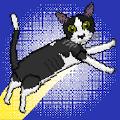 24只猫手游v1.0.5 安卓版