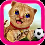 小猫咪模拟器游戏v1.1 中文版