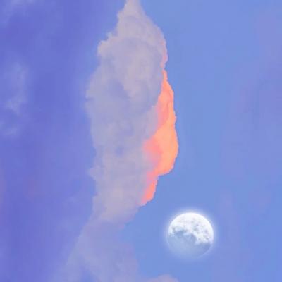 2021适合秋季的橘色夕阳个性头像 仅一次的人生当然要活的比谁都炽热