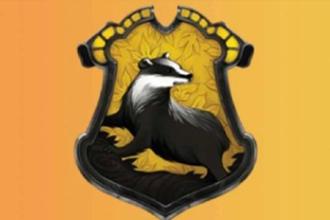 哈利波特魔法觉醒分院测试链接入口 哈利波特魔法觉醒分院测试题答