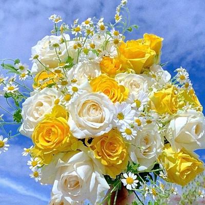 ins很复古又很好看的鲜花背景素材 我们永远想要的是对方的偏爱