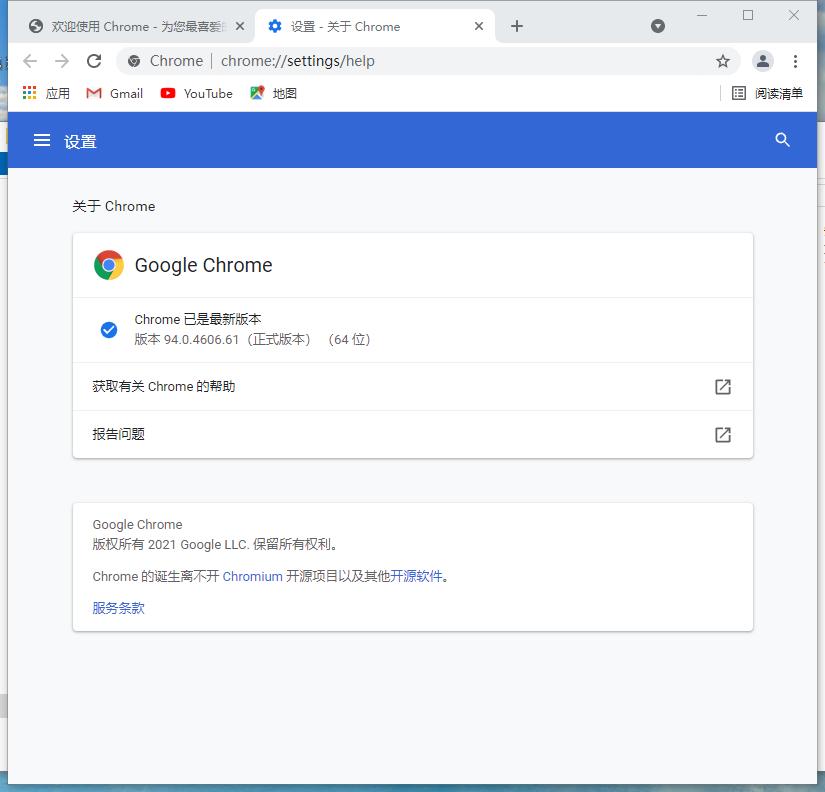 Google Chrome浏览器v94.0.4606.61 官方中文版
